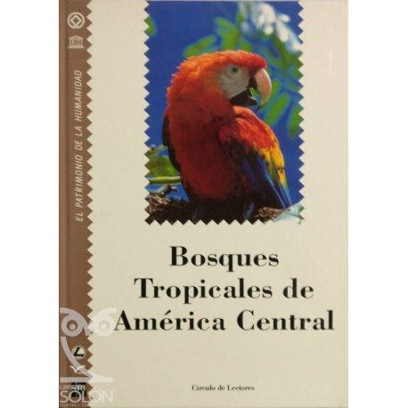 La Enciclopedia del estudiante 17 - Historia del Arte