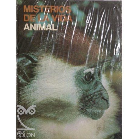 La Enciclopedia del estudiante 20 - Música