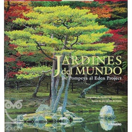 Manual de español correcto. Morfología y sintáxis - Vol.2